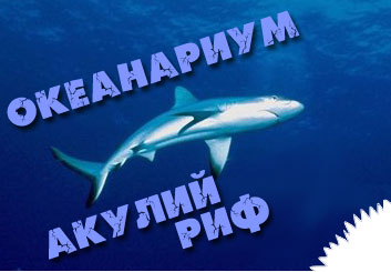 Акулий риф